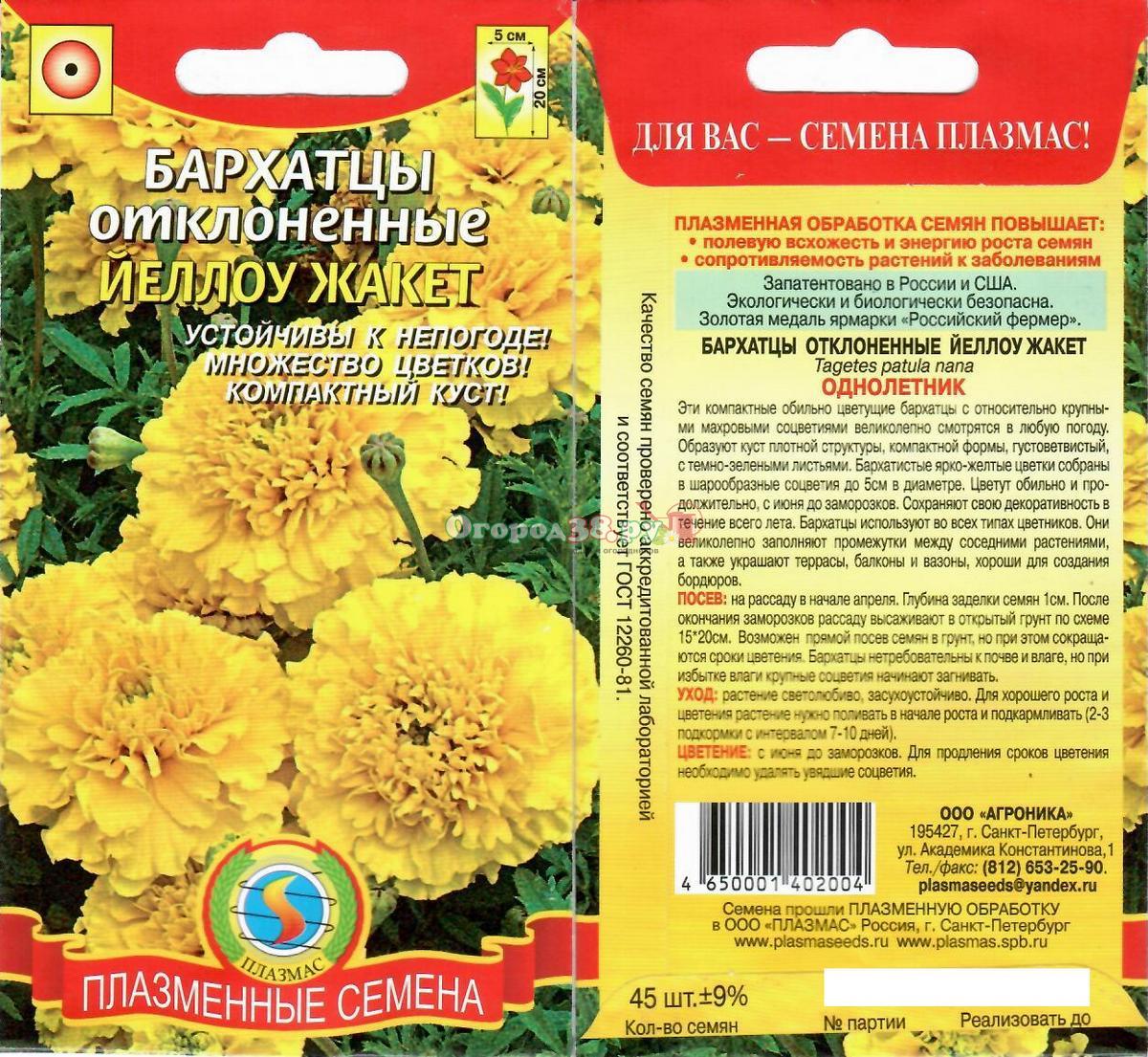 Цветы садовые семена фото и название