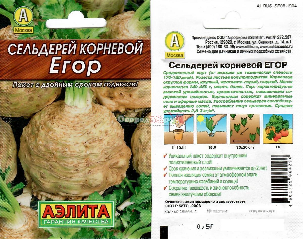 Сельдерей корневой егор выращивание из семян 14
