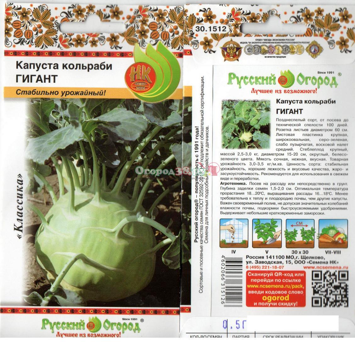 Капуста кольраби выращивание рассады, уход в период 73