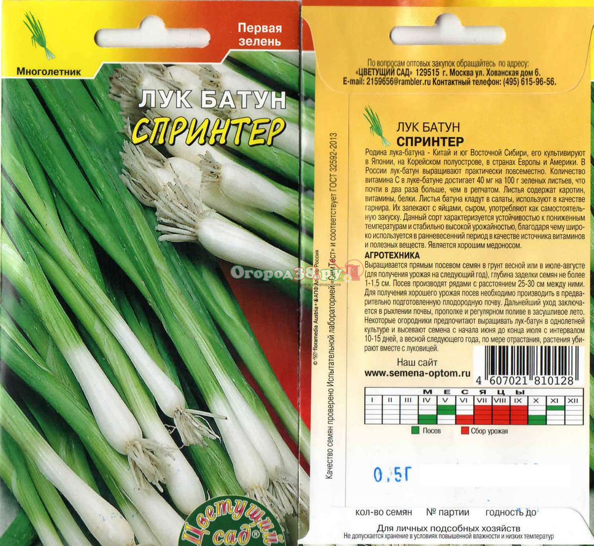 Сажаем лук-батун семенами 48